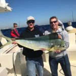 florida group charters fishing florida