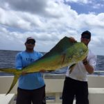 newsletter summer-fishing on florida fishing charter